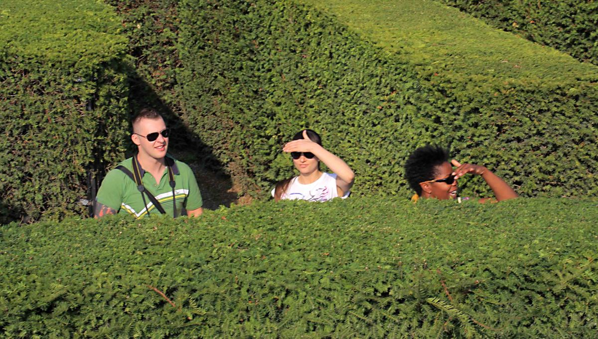 Lost in the maze - 'Can you see the exit?'