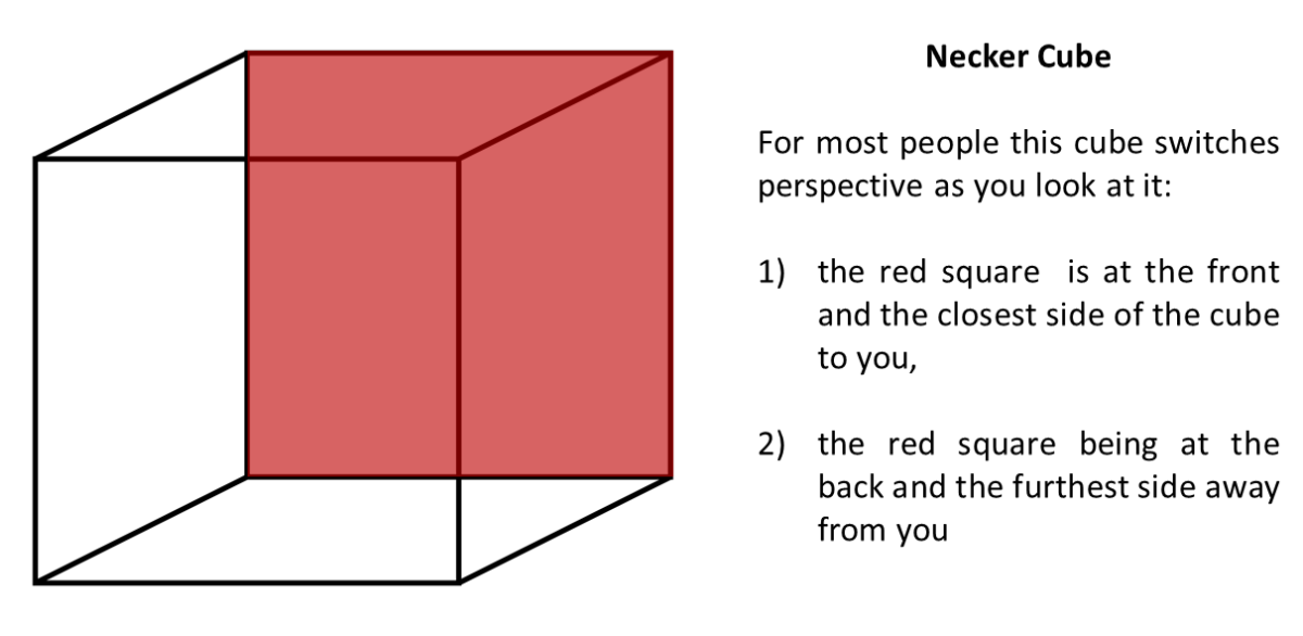 Necker Cube Example