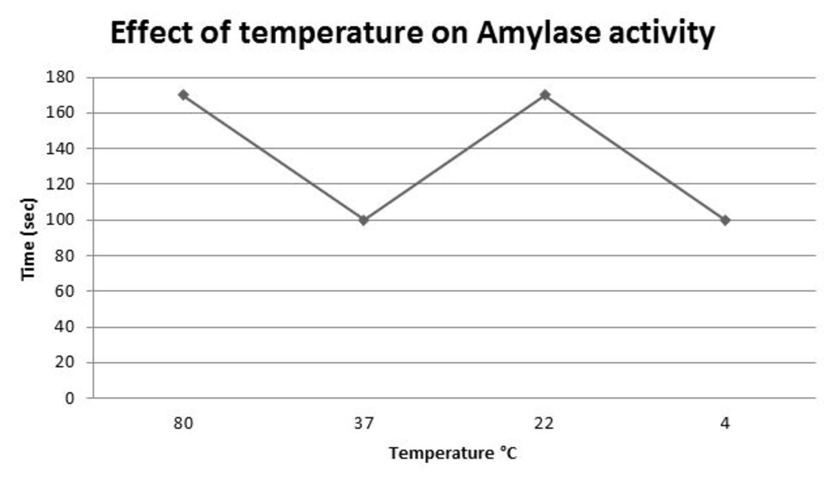 Figure 5 The effect of different temperatures on amylase activity and starch digestion