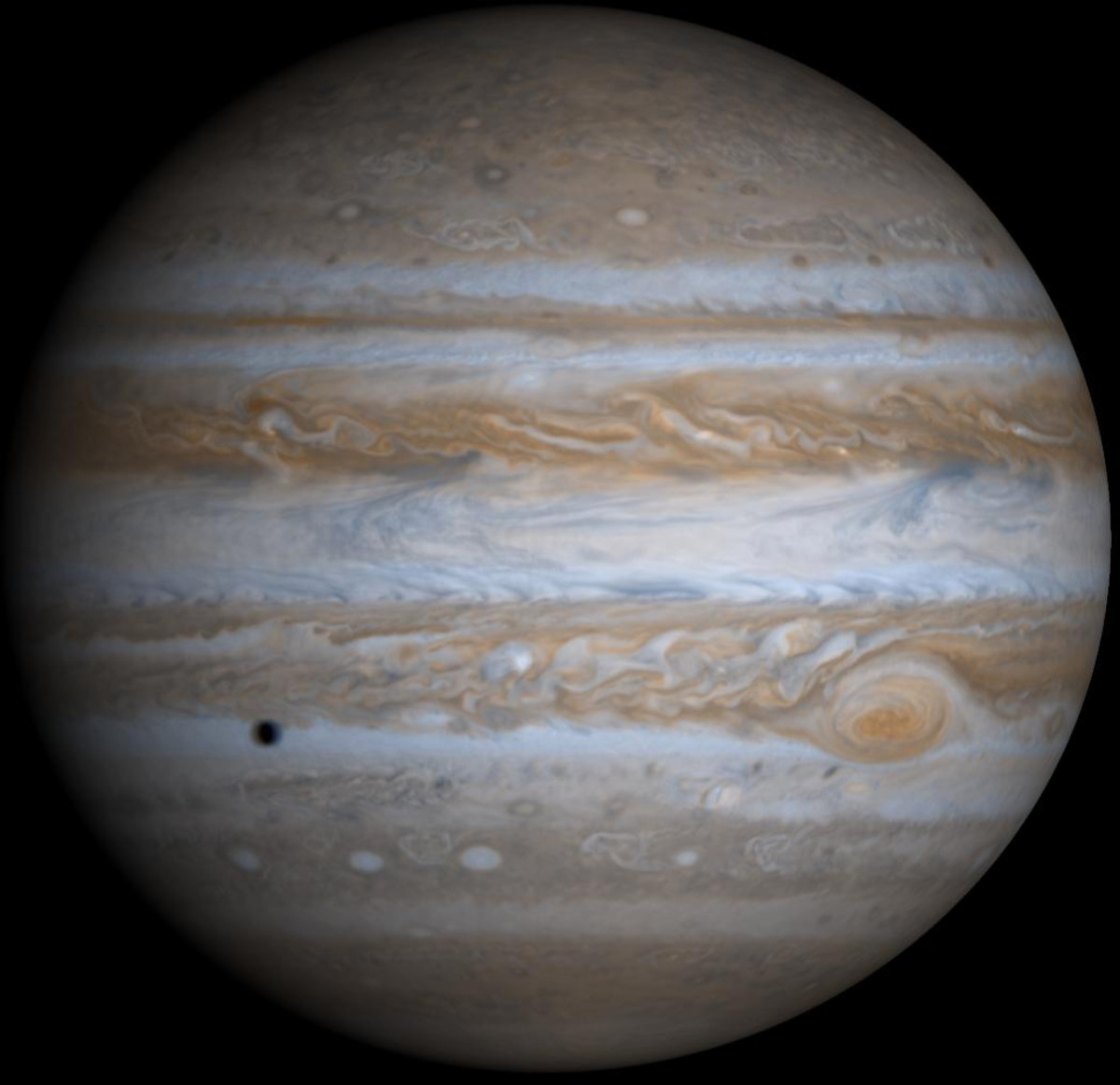 True-color photo from Cassini wrapped on globe by JPL imaging. Yes, Jupiter really is that fat. It spins incredibly fast. (The black spot is the shadow of one of its moons.)