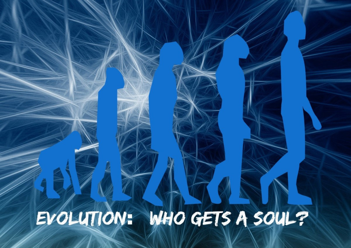 At what point in the evolution of human beings did souls start to be placed into bodies?