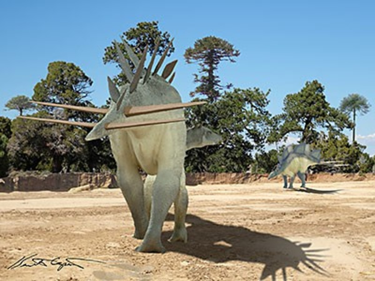 Alcovasaurus, by Kenneth Carpenter.