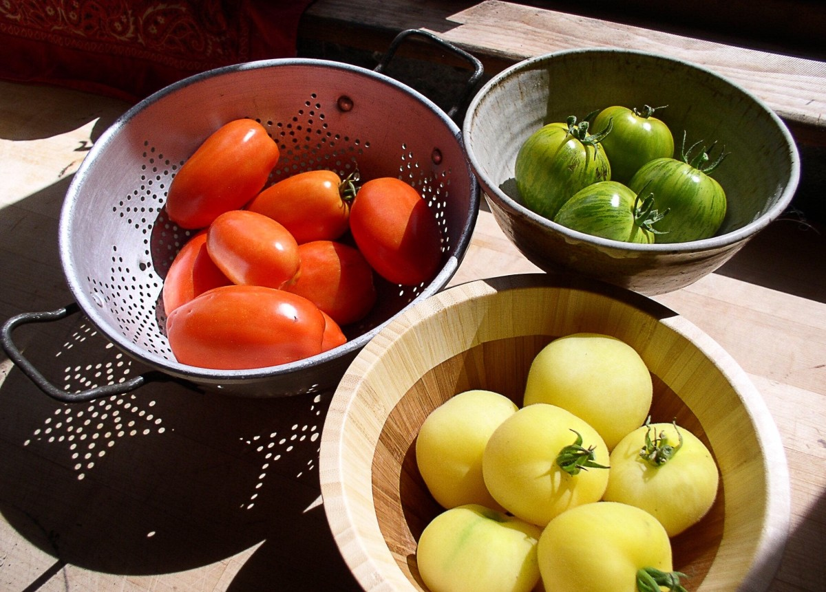 Tomatoes are not always red and they are not always round.