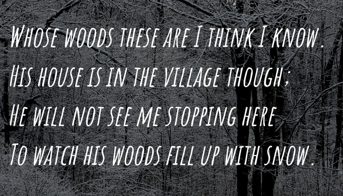 """Poem Analysis: Robert Frost's """"Stopping by Woods on a Snowy Evening"""""""