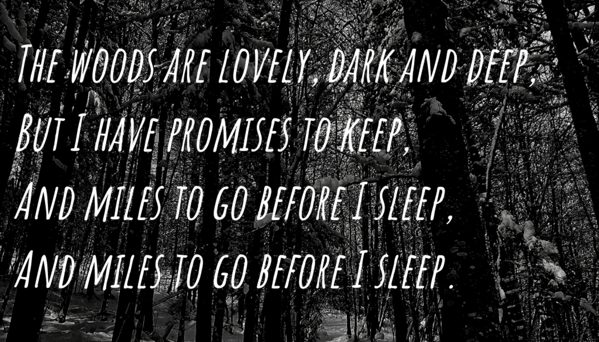 The haunting fourth stanza includes a repeated line and leaves readers with a sense of morbid wonder.