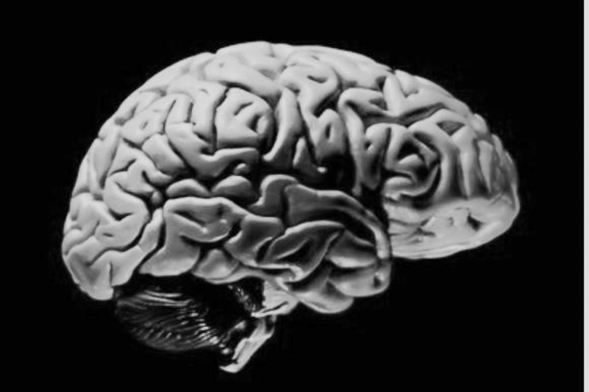 is-the-mind-other-than-the-brain