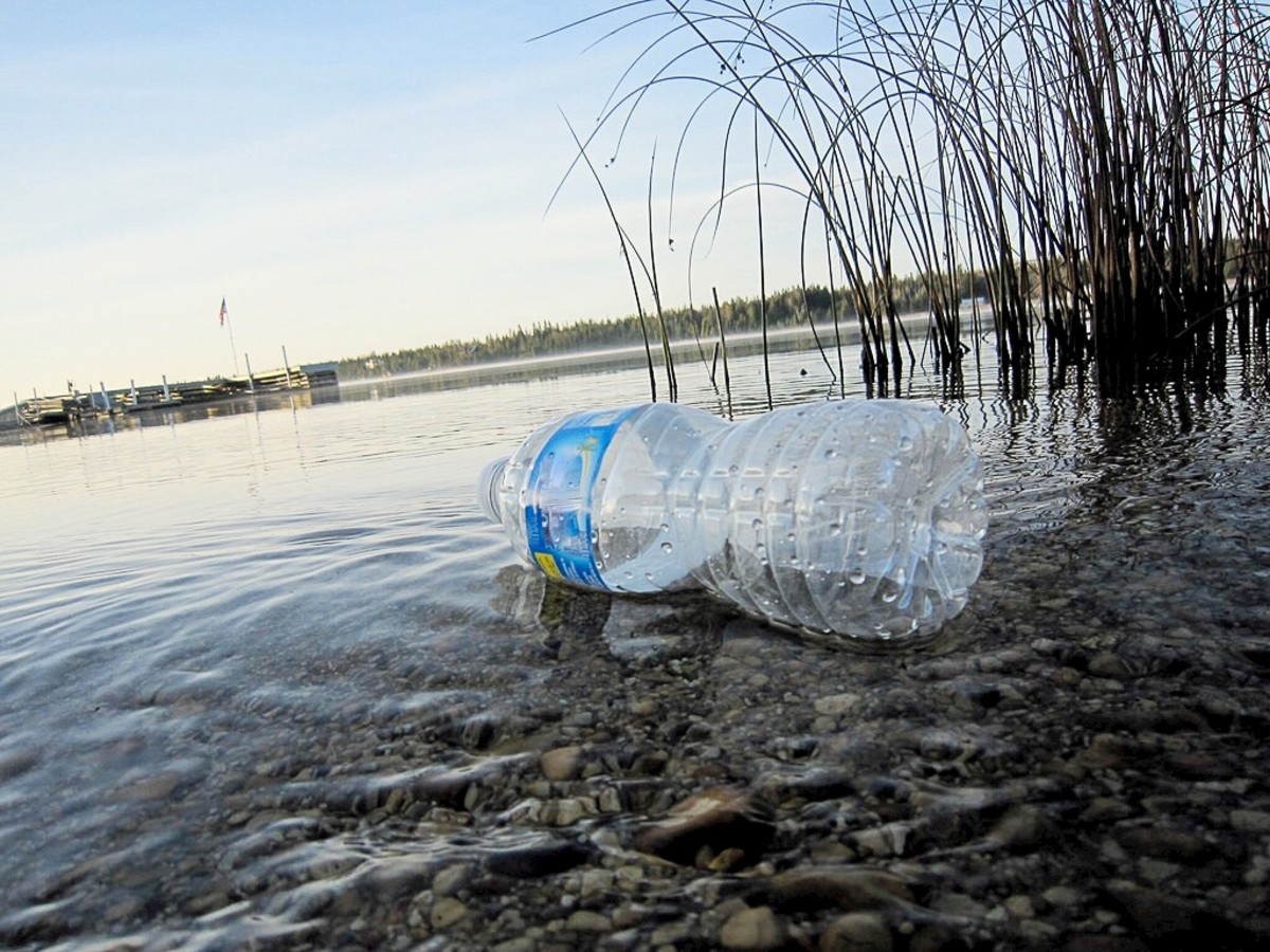 In many places, single-use plastic water bottles are a major source of pollution.