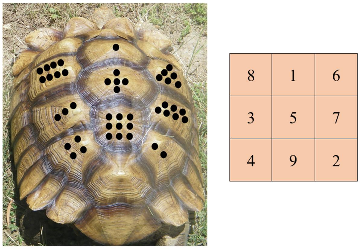 how-to-create-magic-squares