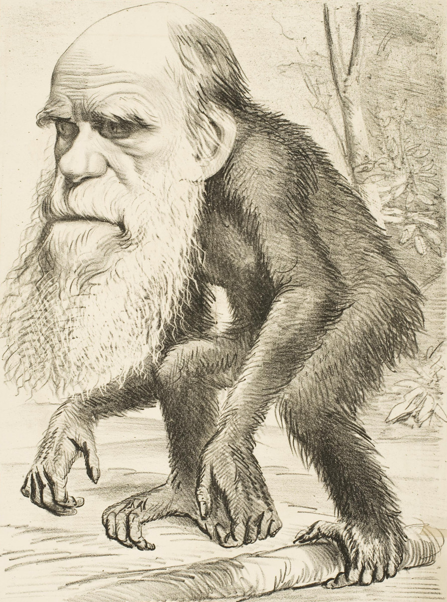 Darwin is mocked for his views in this editorial cartoon.