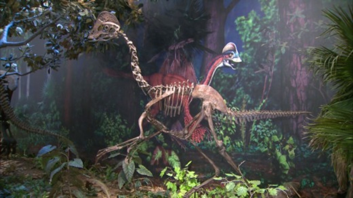 Cast of Anzu skeleton and mural segment by Bob and Tess at the Carnegie Museum of Natural History.