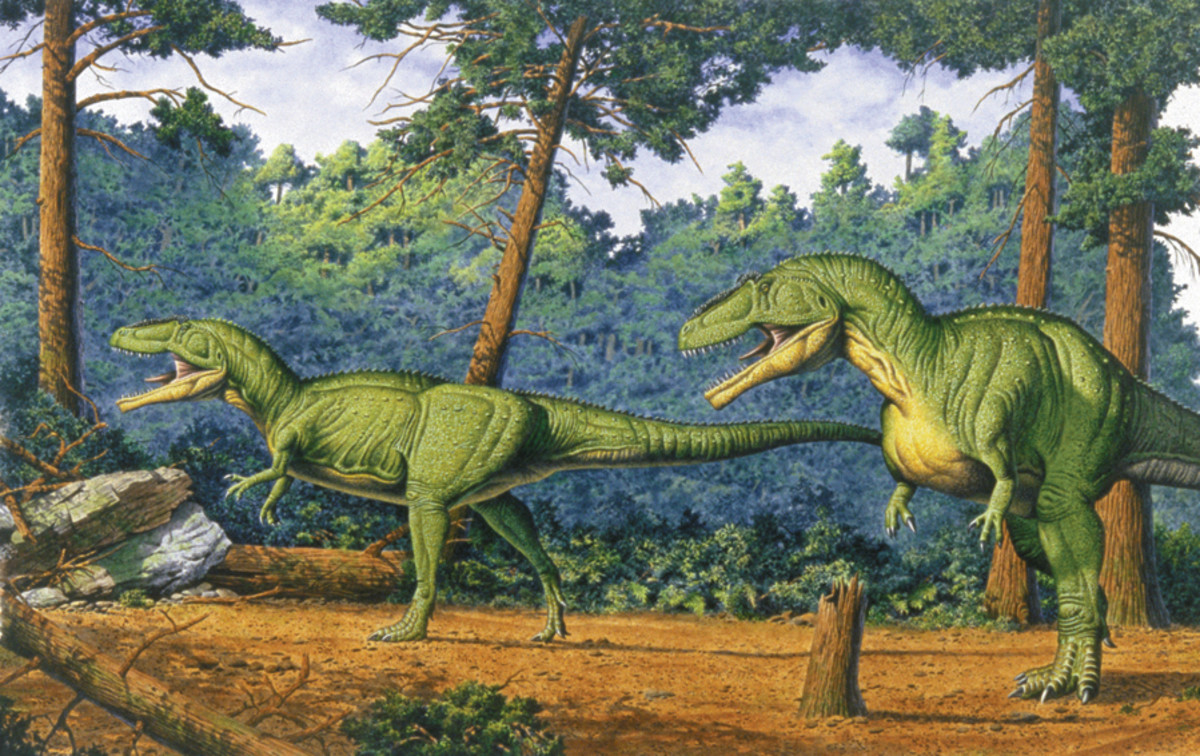 A pair of Giganotosaurus by Bob and Tess, c. 1997.