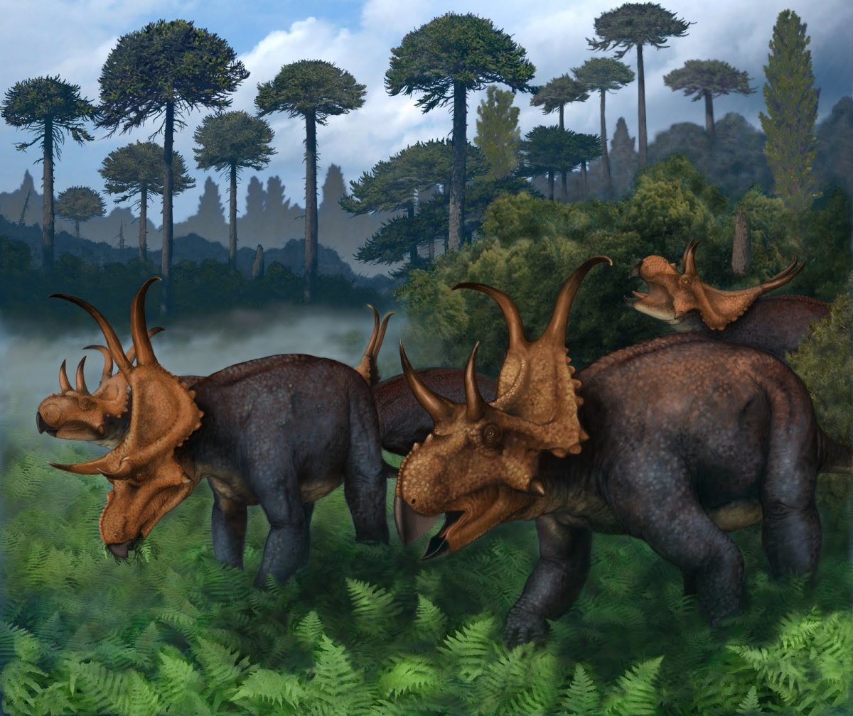 A herd of Diabloceratops -- a ceratopsian named in 2010 -- by Bob Walters and Jeff Breeden, 2011.