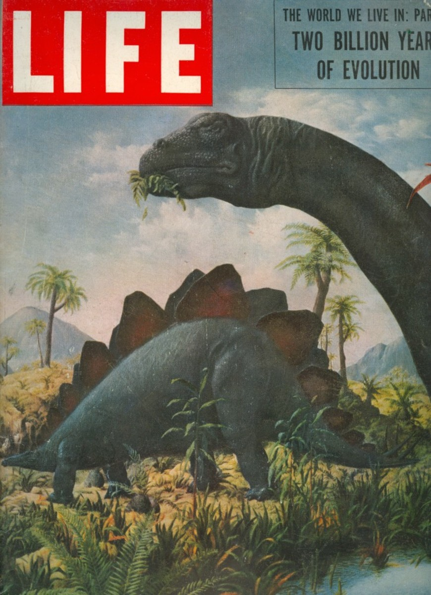 September 1953 issue of Life, with art by Rudolph Zallinger.