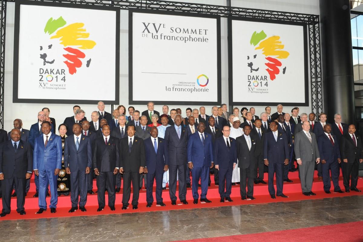 The 2014 Dakar summit