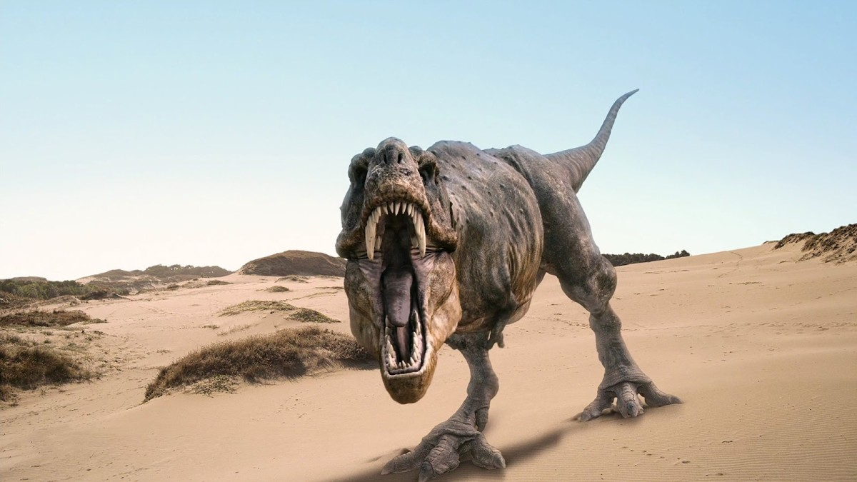 Popular depiction of T Rex