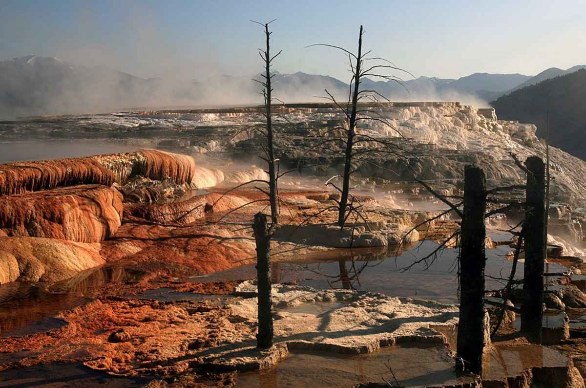 In Yellowstone NP, sometimes geothermal activity comes very close to the earth's surface