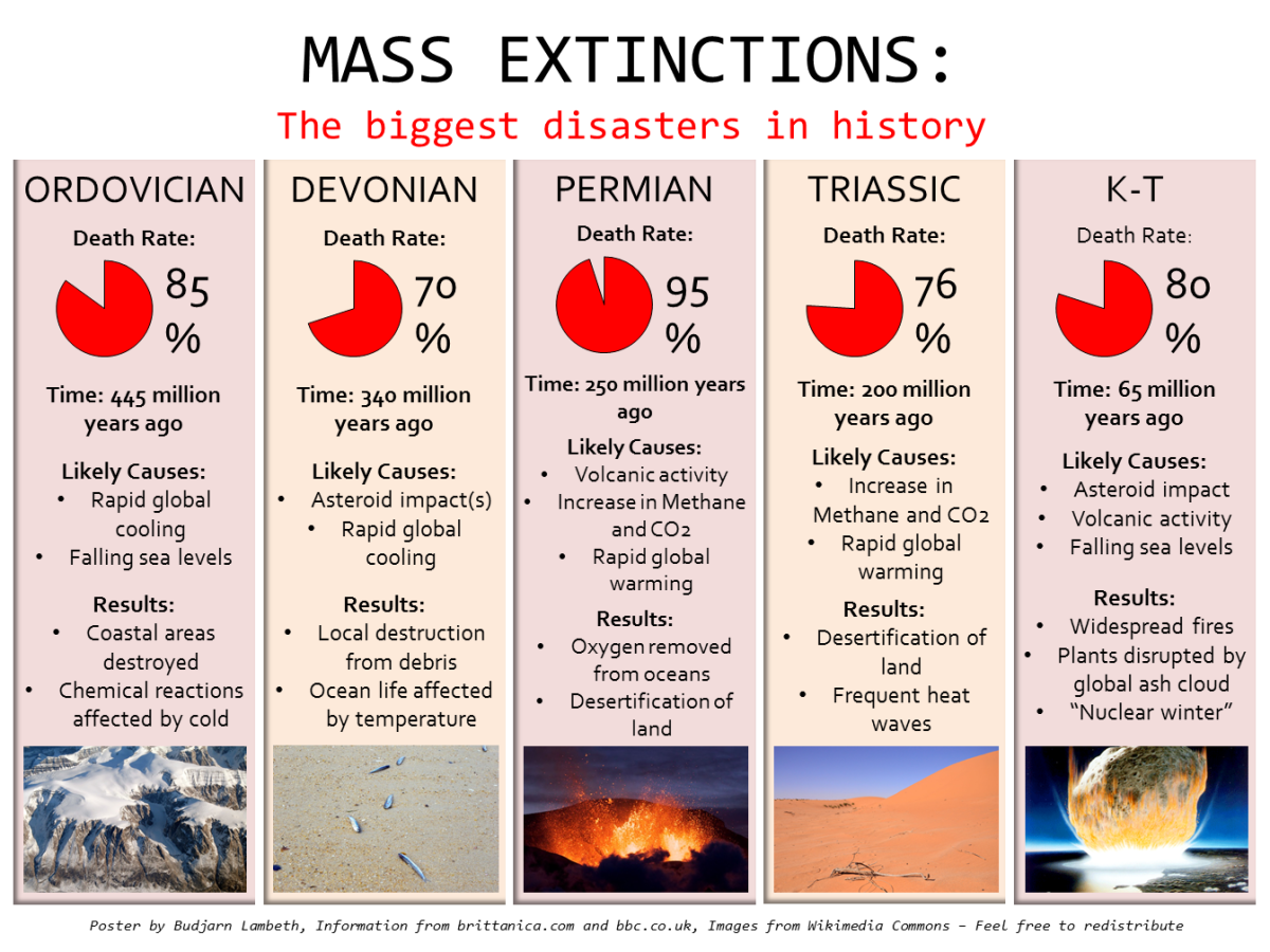 "Mass Extinctions, the biggest ""disasters"" in history, happening at the right times and in the right amounts may have actually promoted the development of intelligent life."