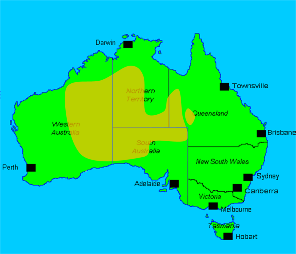The habitat of wild camels in central Australia.