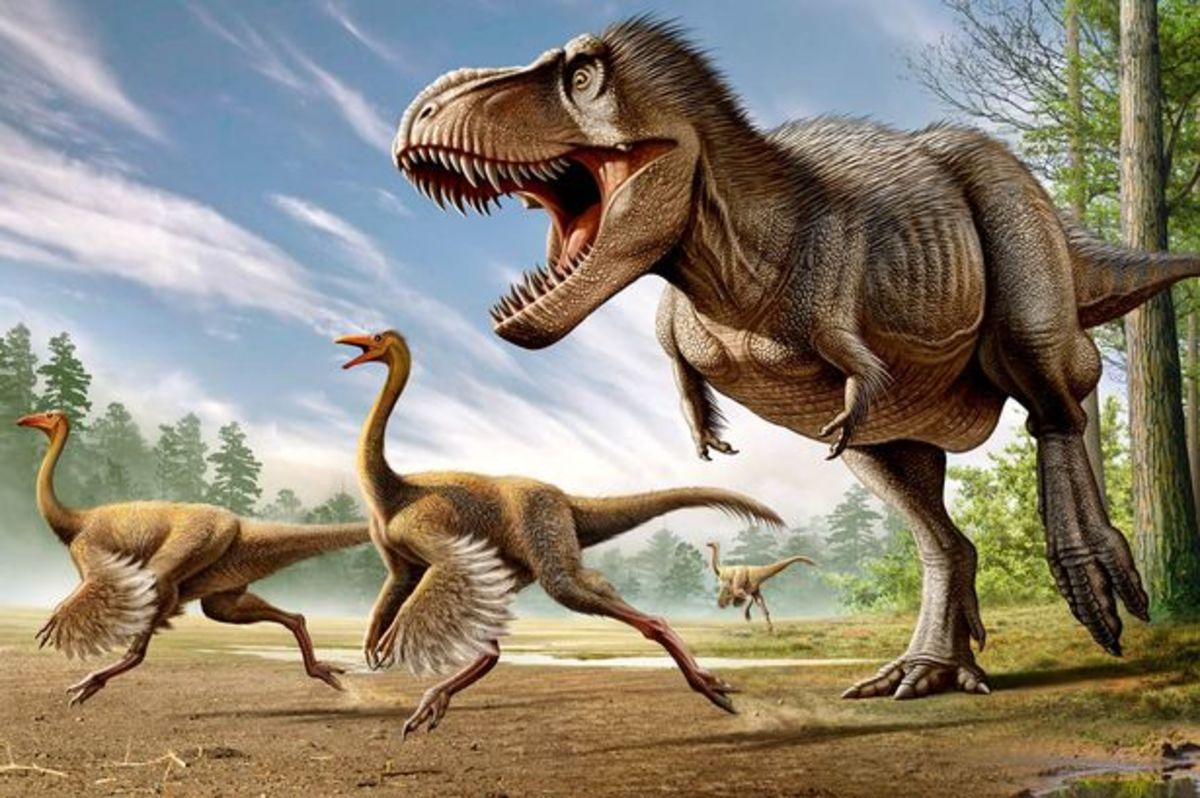 A colored T-Rex reconstruction.