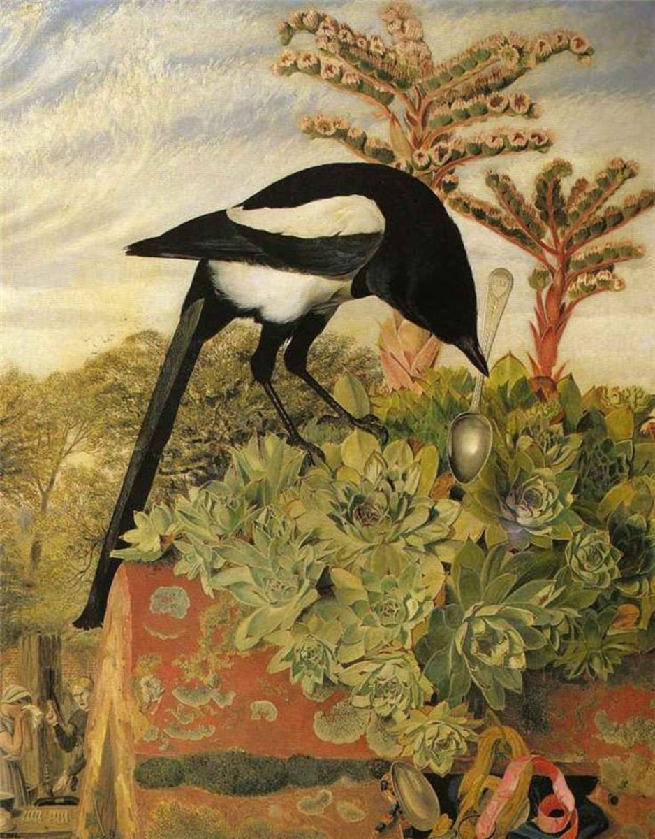 An unfair portrayal of the magpie as a thief.
