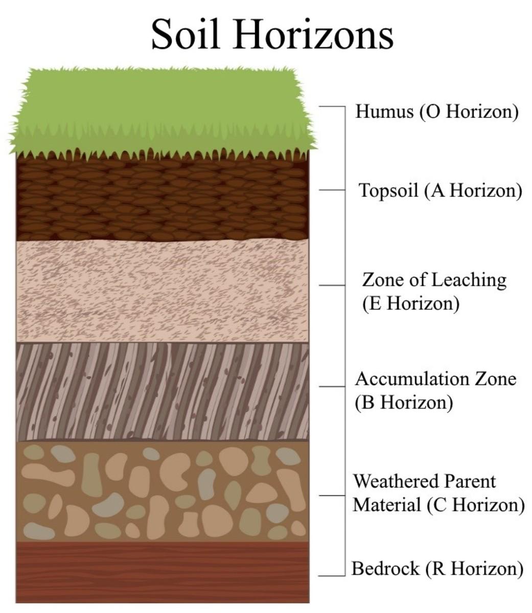 visual-manual-soil-classification-for-cmt-field-technicians