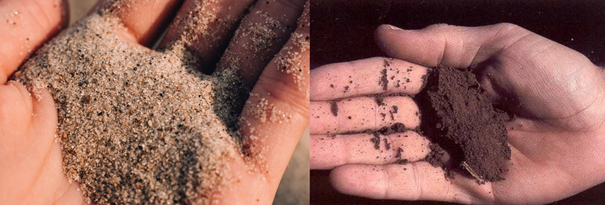 With sand like the sand on the left, you can see the individual grains easily with the naked eye, but with silt, like the silt pictured on the right, you may need a microscope to see individual grains.