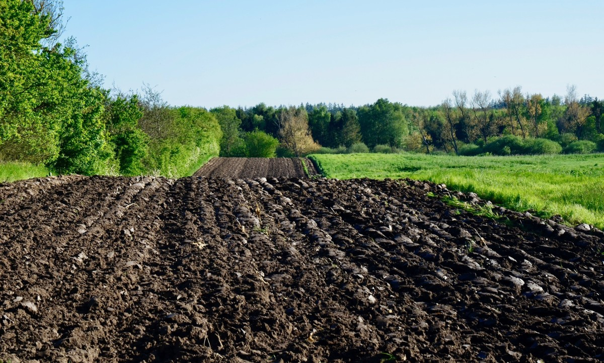 Organic soils are very good for farming due to the nutrients they contain from decaying plants. If it looks good for your garden or farm, it's probably an organic soil.