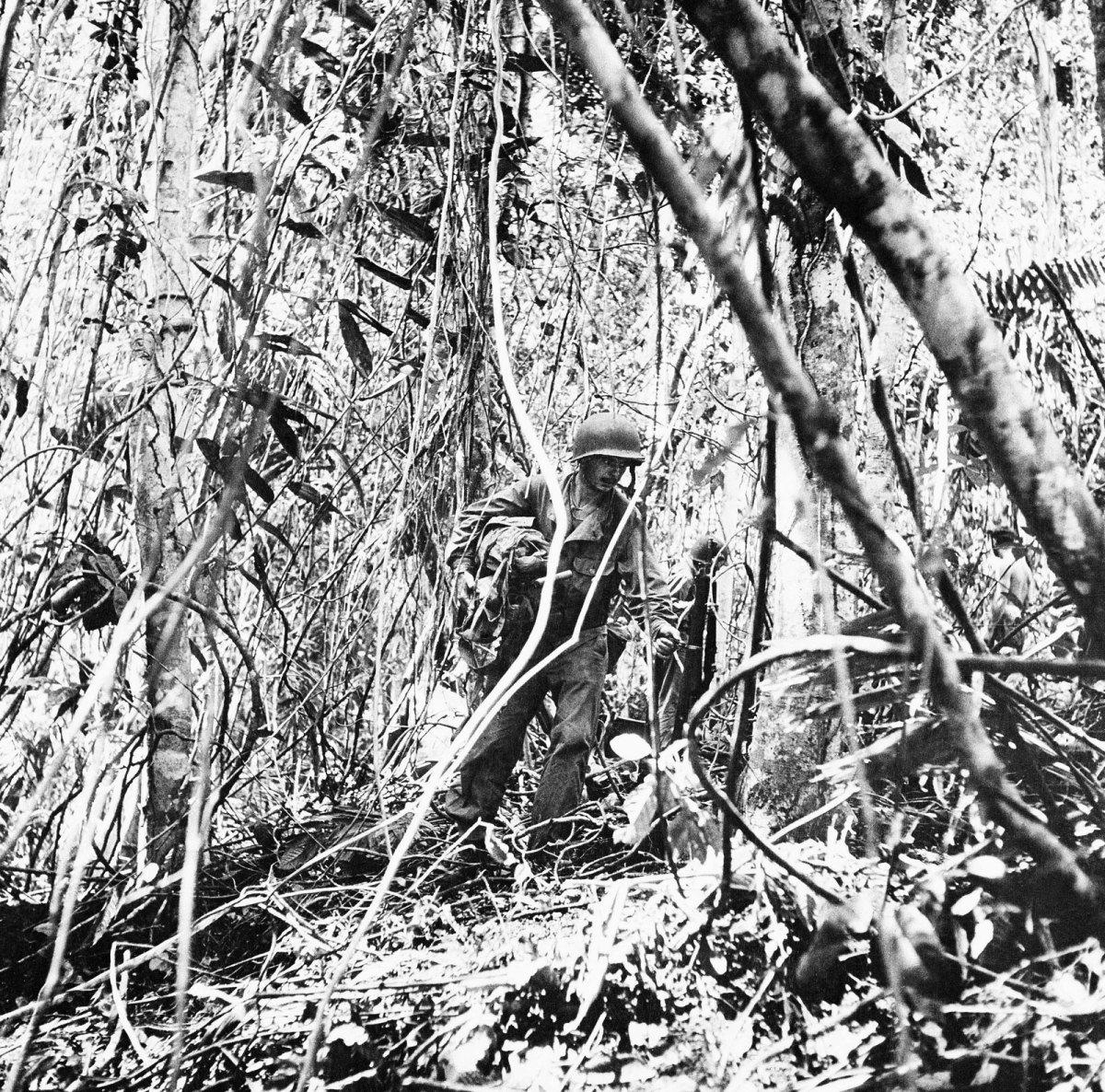 Jungle conditions at Guadalcanal.
