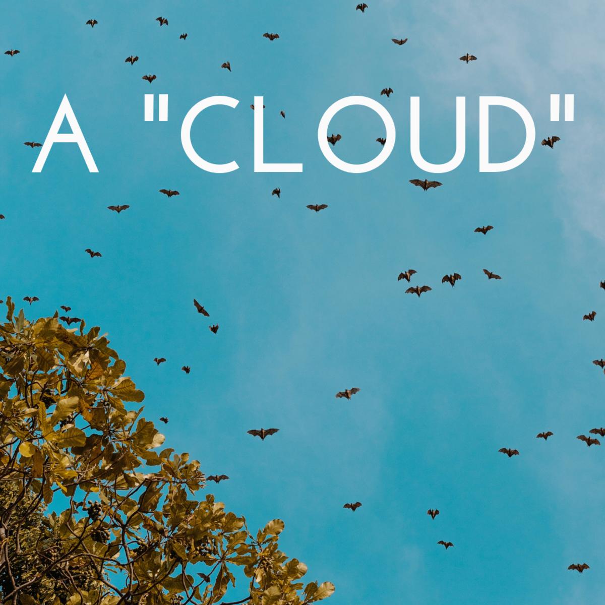A cloud of bats.
