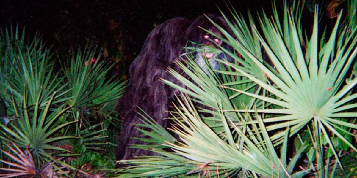 10-lesser-known-cryptids-from-around-the-world