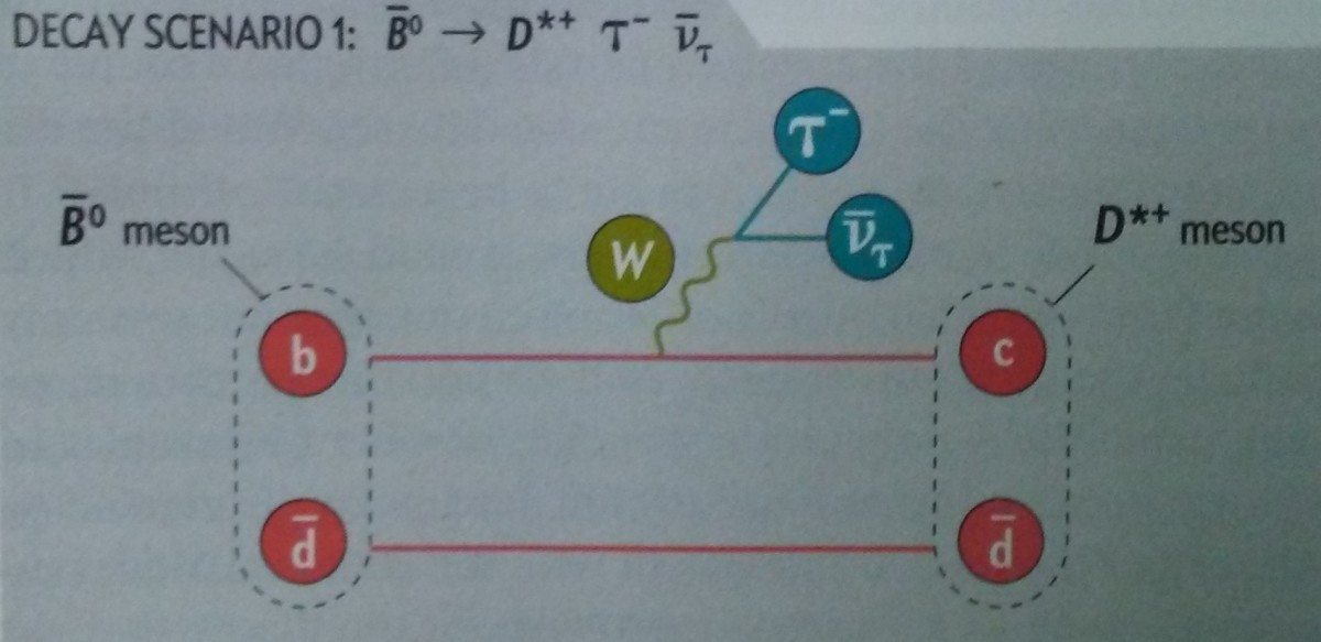the-physics-of-beauty-or-how-beauty-hadrons-are-revealing-particle-mysteries