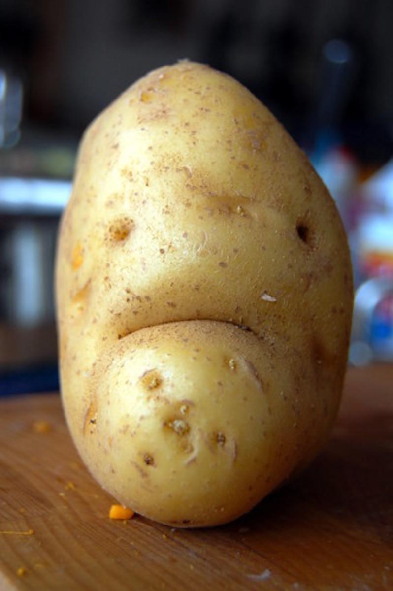 Mr. Grumpy Spud.