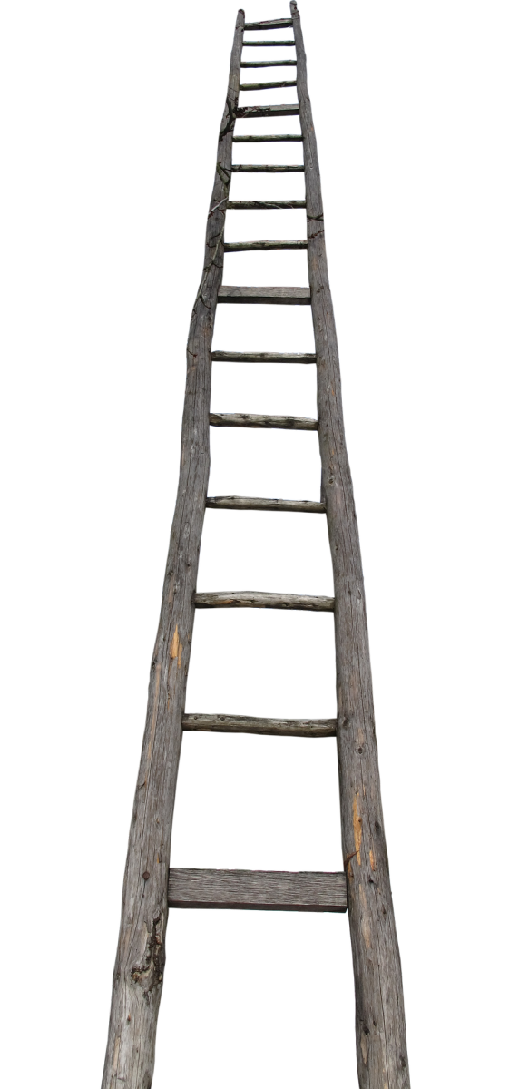 Ladder Seeri सीढ़ी