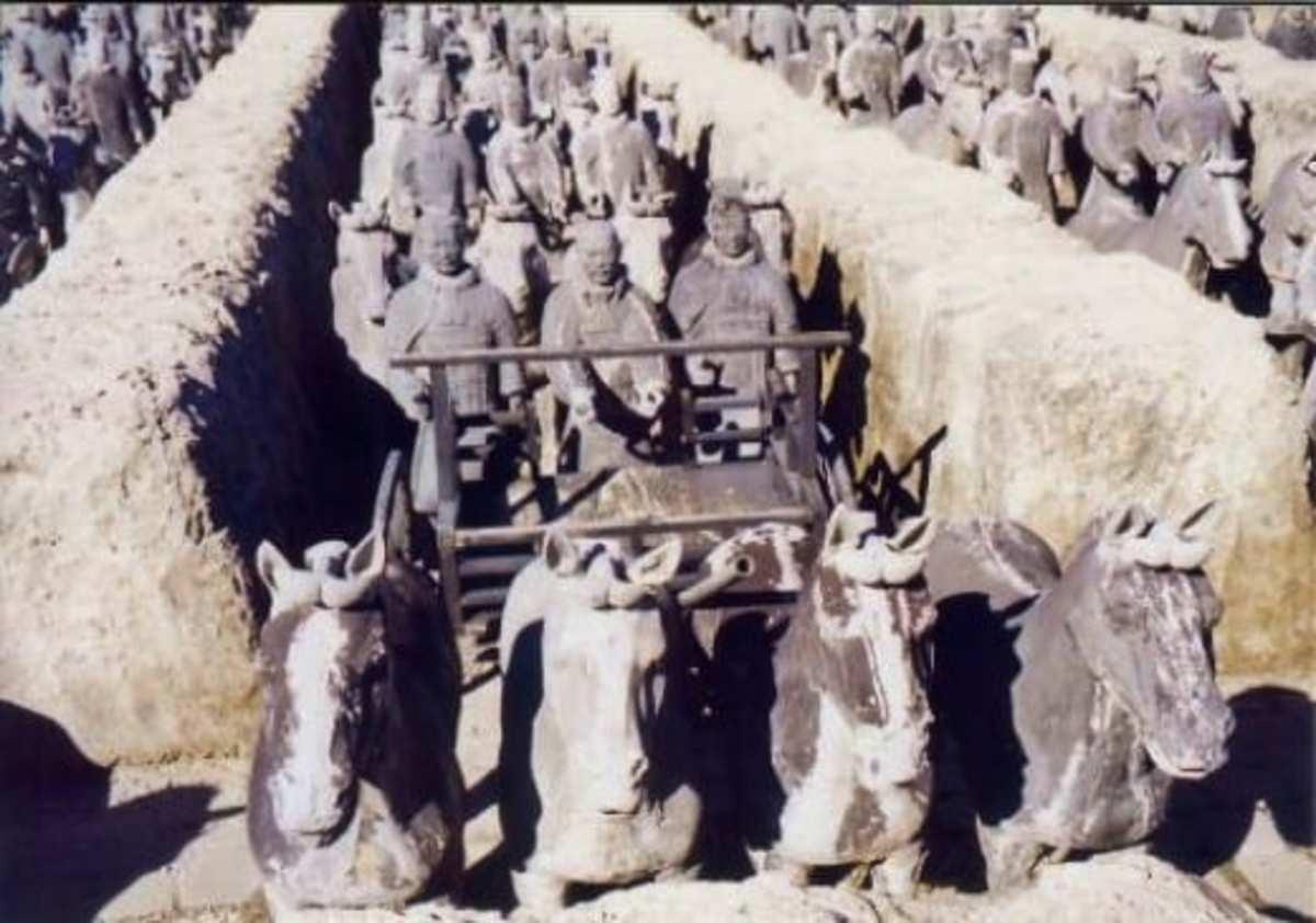 Terra cotta soldiers & horses