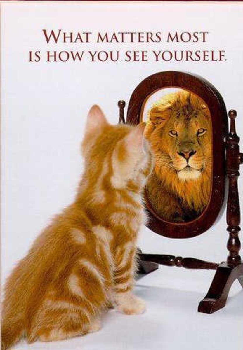 Incredible self confidence.