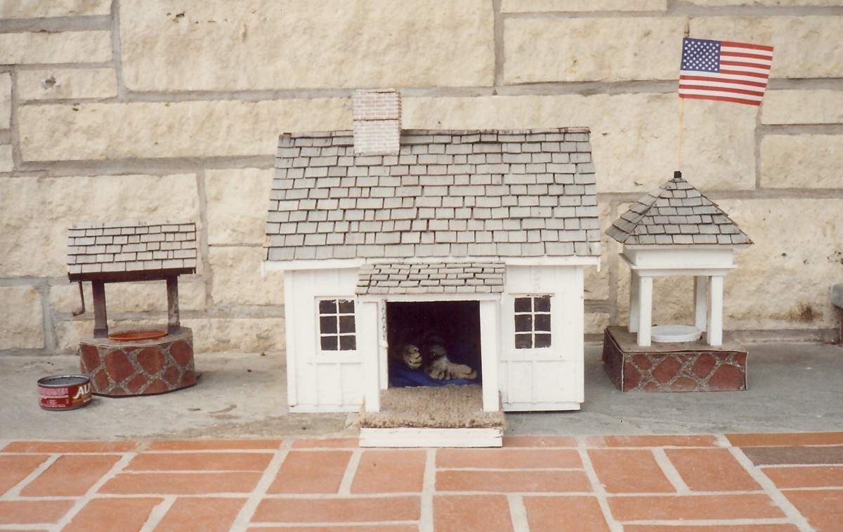 Seen at the Herbert Hoover Presidential Library - The mother cat and kitten abode inside the portico of the museum.