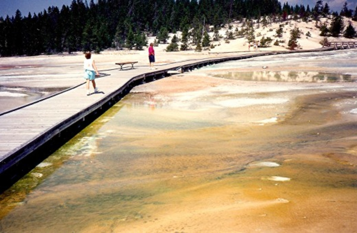 Wooden walkways in Yellowstone