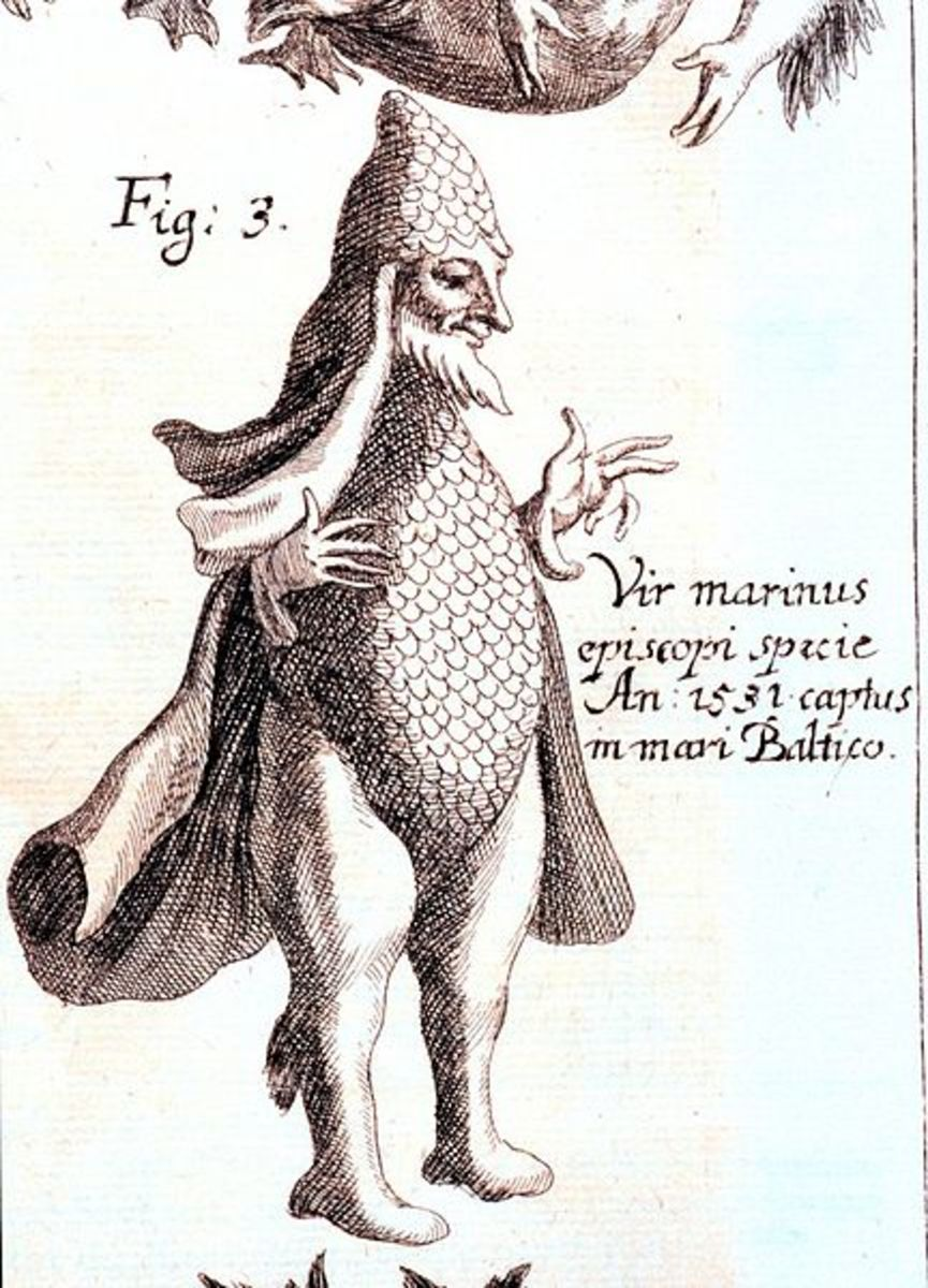 Merman caught 1531, Baltic Sea. 'Specula physico-mathematico-historica notabilium ac mirabilium sciendorum' by Johann Zahn, 1696, Augsburg, Germany. Library Call Number: Q155 .Z33 1696. Image ID: libr0081, Treasures of the NOAA Library Collection. Ph