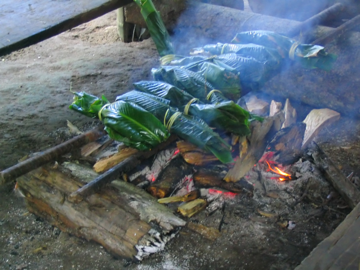 Shuar cook over an open fire. Often food is wrapped in a banana tree leaf to protect it from charring.