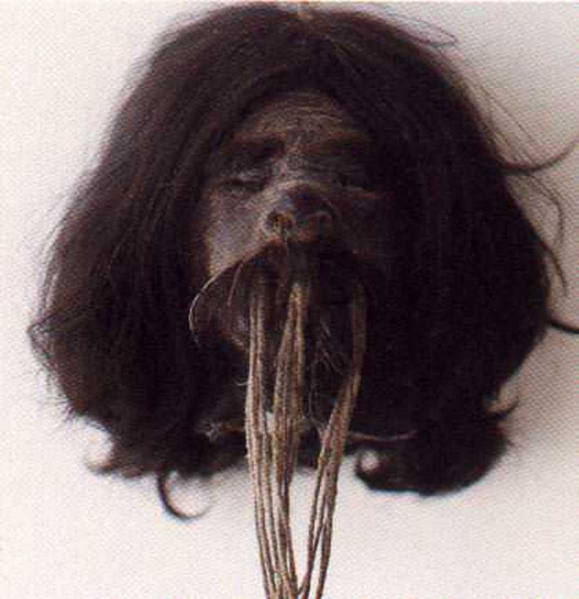 A Shuar tsantsa, or shrunken head.