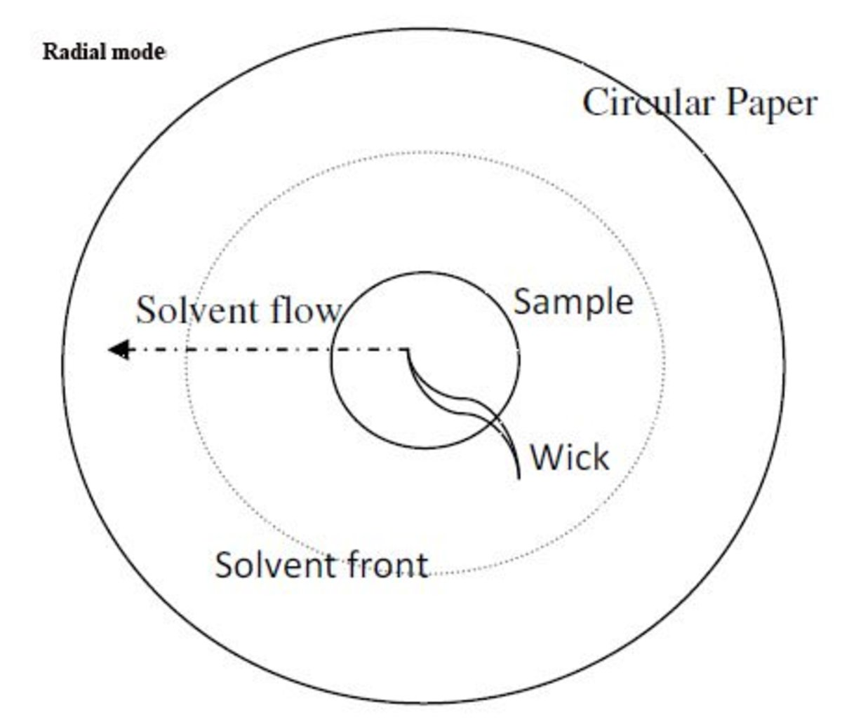 paper chromatography protocol