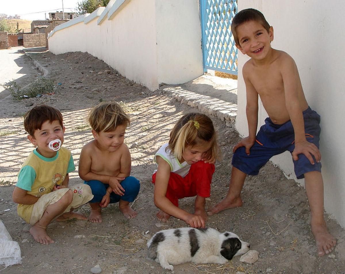 Kurdish children, Iraqi Kurdistan.