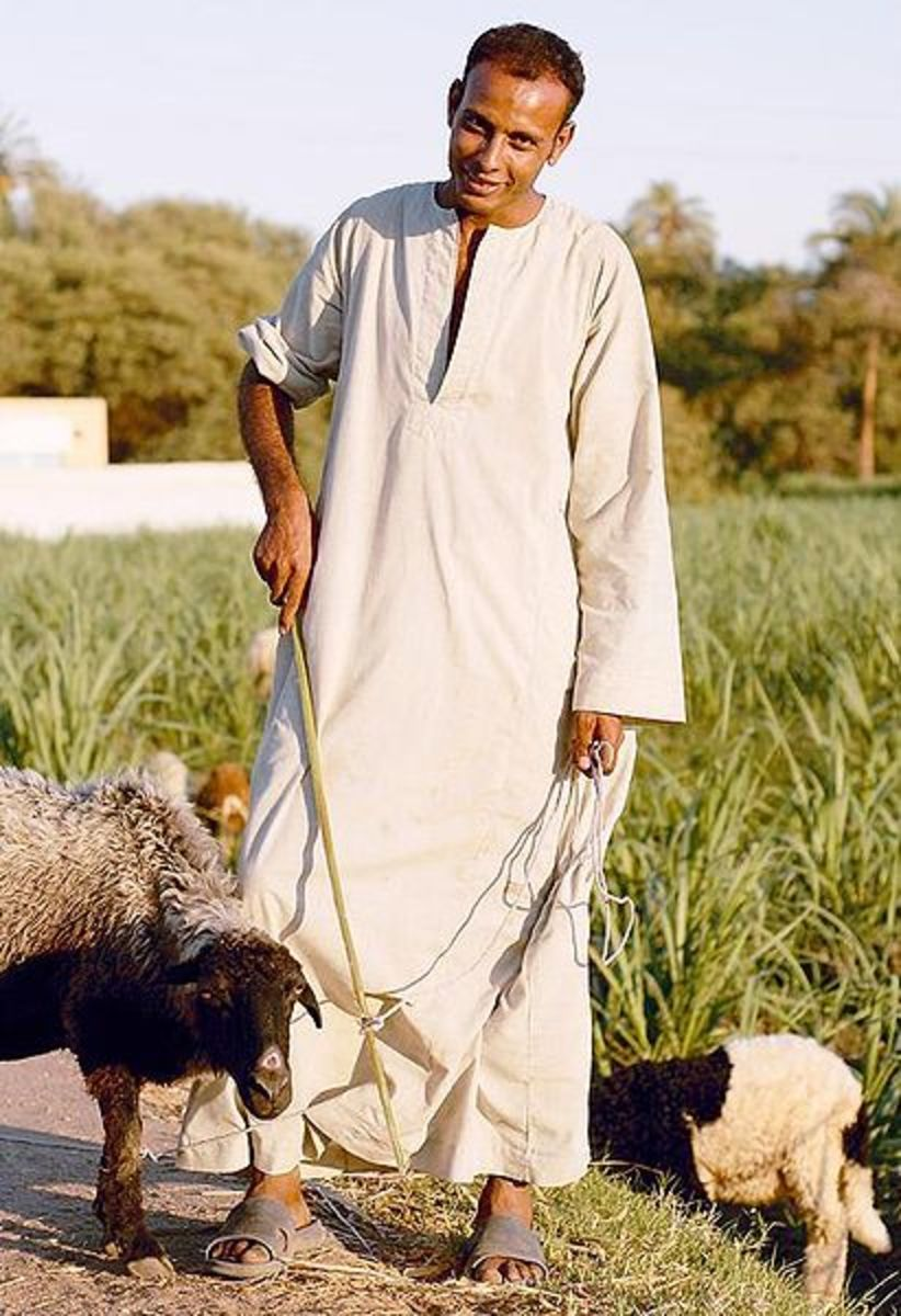 Egyptian farmer, fellah