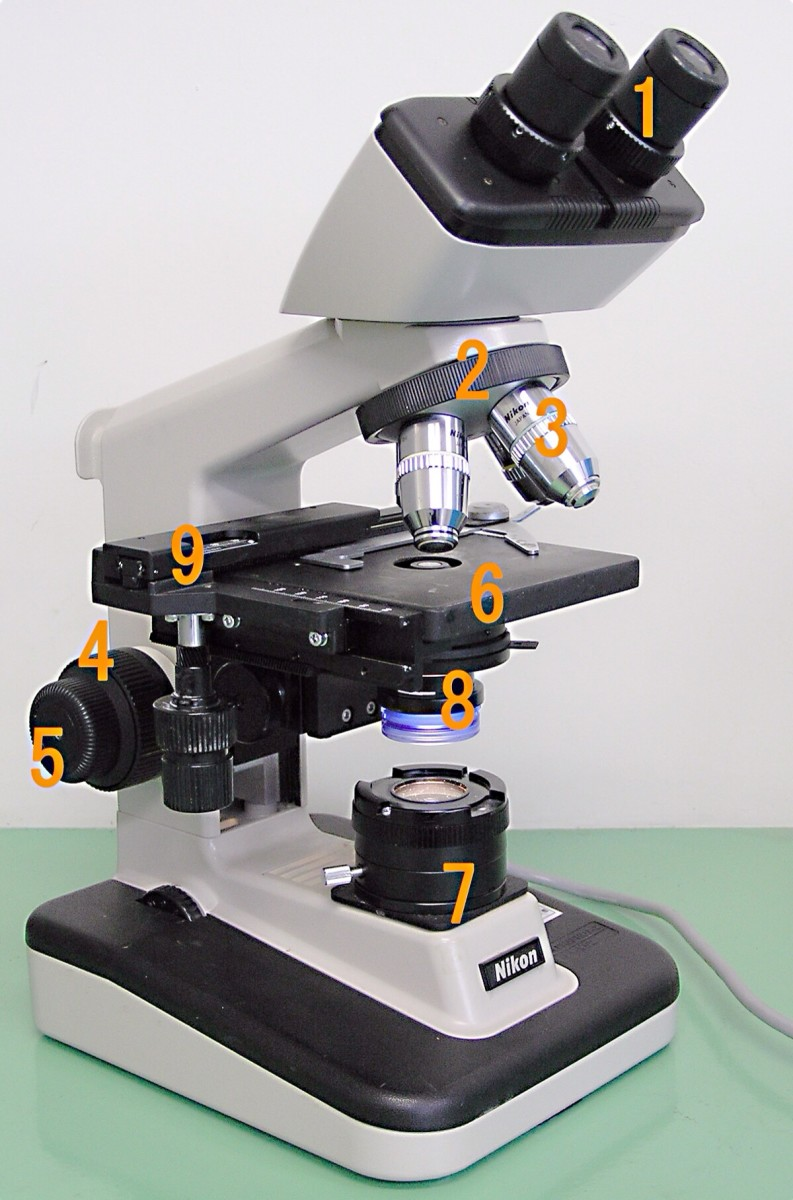 A compound microscope