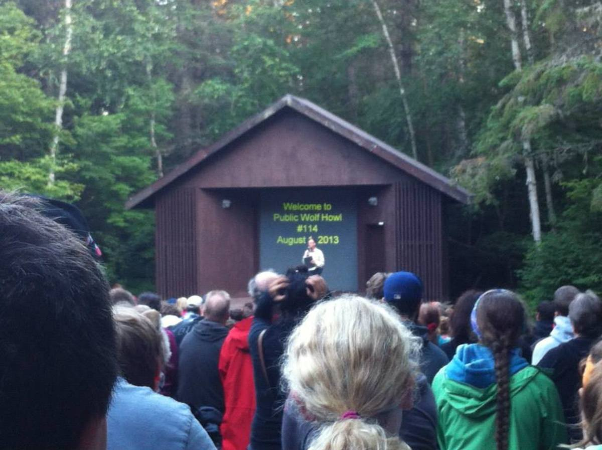 Algonquin Park Public Wolf Howls' begin with a slide show presented by Algonquin Park Naturalists, located at the park's Outdoor theatre.