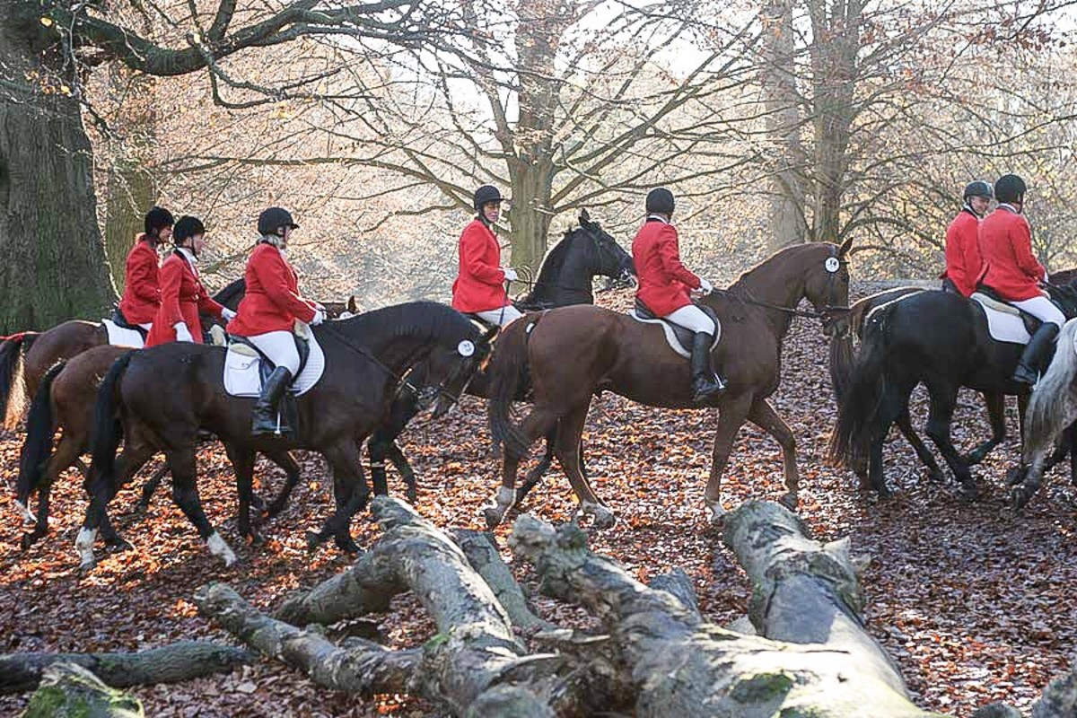 Red is a traditional colour worn by fox hunters.