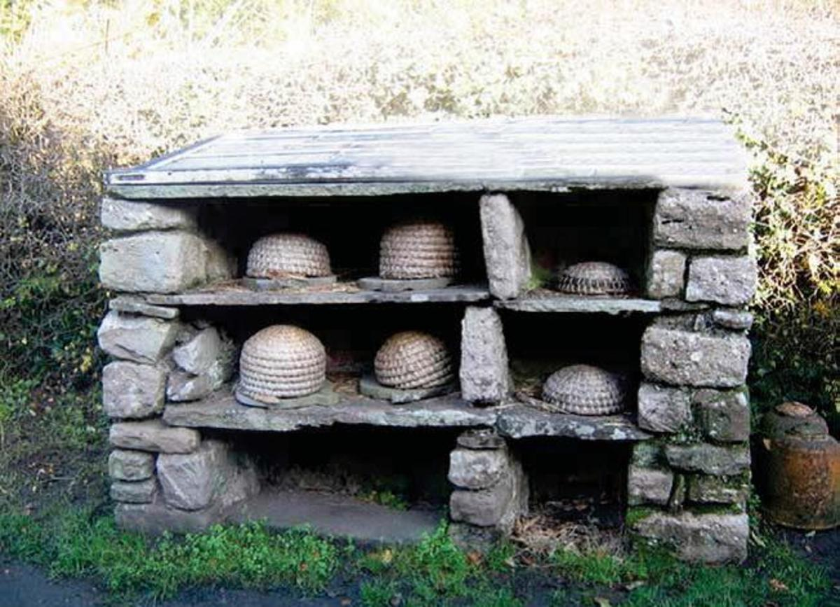 Bee skeps (straw or wicker beehives) at St. Fagen's, Wales.