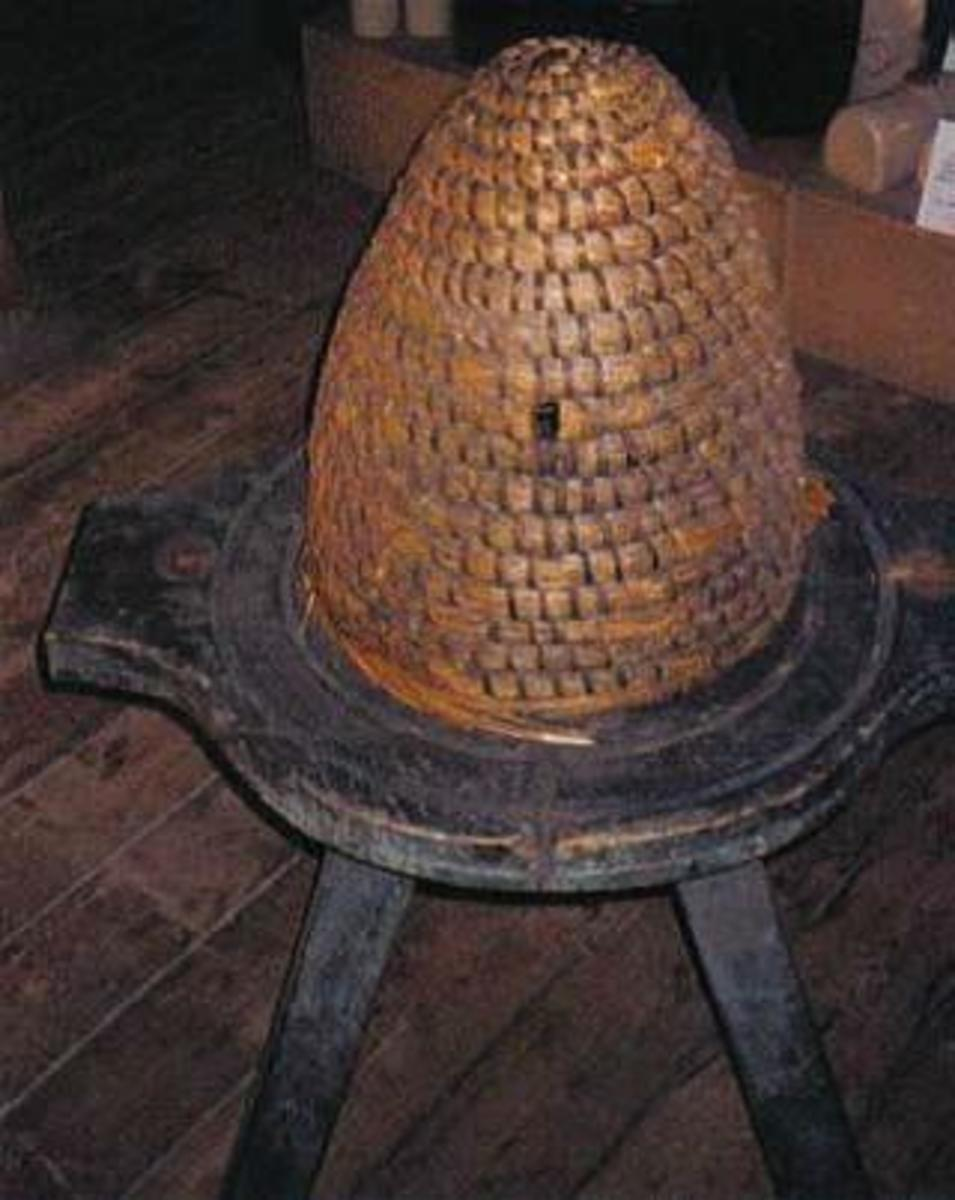 Bee skep from Dalgarven, Scotland.