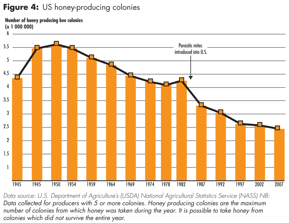 US Honey Producing Colonies