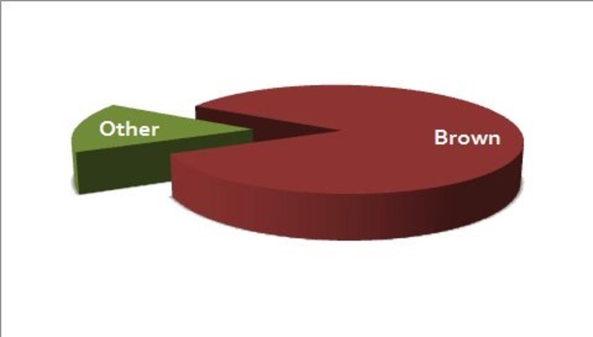 Pie chart: Brown Eyes versus Other Eye Colors